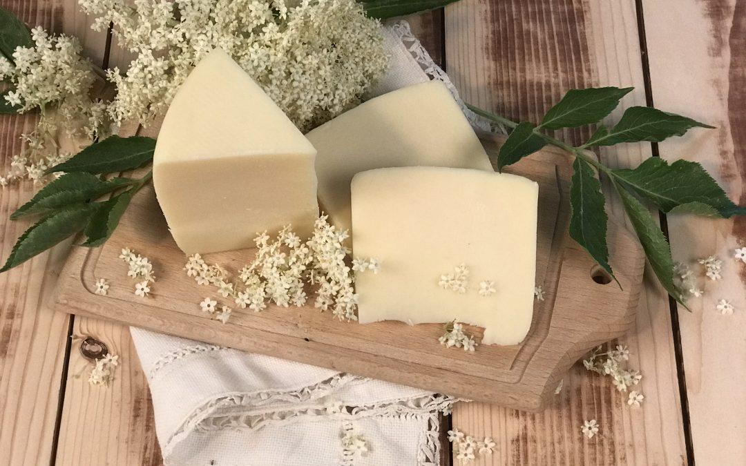 Virágos álmok – Milyen ízharmóniát ígér a bodzavirág és a gyimesi érlelt sajt párosa?